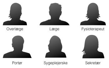 Region Hovedstaden: Rolledrejebog og klassifikation